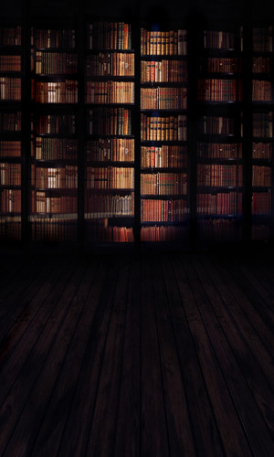 Silence in the Library Backdrop
