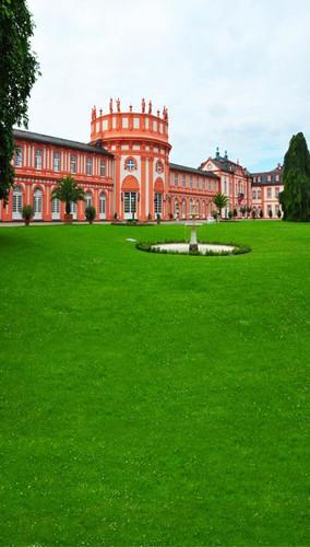 Abbey Green Backdrop