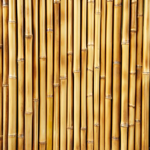 Bamboo Plank Floor