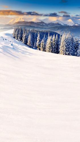 Snowy Mountaintop Backdrop
