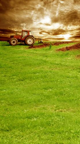 Plowed Field Backdrop