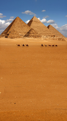Pyramids Backdrop