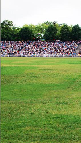 Fan Packed Bleachers Backdrop