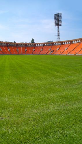 Vacant Stadium Backdrop