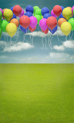 Balloons Away Backdrop