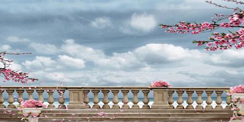 Cherry Blossom Balcony Wide Format