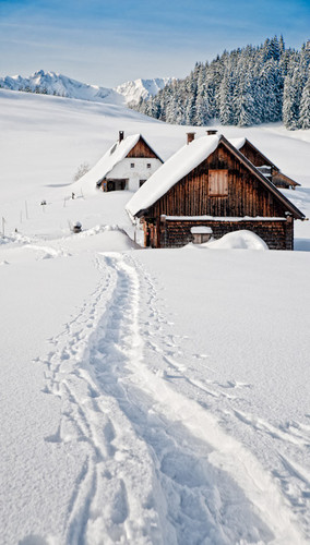 Snow Covered Cabin Backdrop