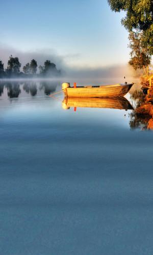 Morning Fishing Backdrop