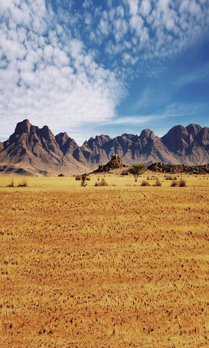 Desert Mountains Backdrop