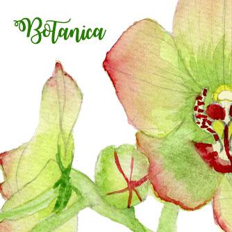 title-botanica.jpg