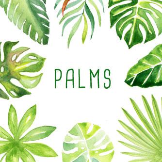 title-palms.jpg
