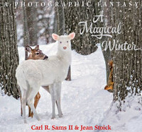 A Magical Winter Book