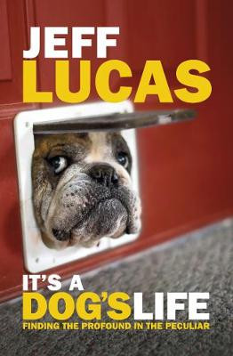 It's a Dog's Life: Finding the Profound in the Peculiar cover photo