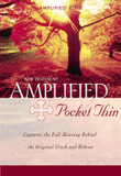Amplified, Pocket-Thin New Testament cover photo