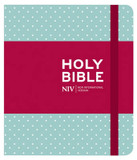 NIV Journalling Bible cover photo