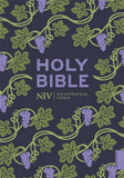 NIV Holy Bible cover photo
