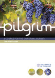 Pilgrim: Book 4: Follow Stage cover photo