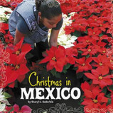 Christmas in Mexico cover photo