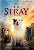 The Stray DVD cover photo