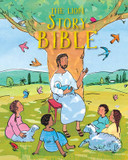 The Lion Story Bible cover photo