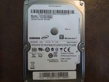 Samsung ST320LM001 HN-M320MBB REV.A Site:DGT 320gb Sata S2R6J9KCA02014 (T)