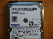 SAMSUNG HM020GI, 20GB, SATA, REV A, F/W: YU100-06 (M40S)