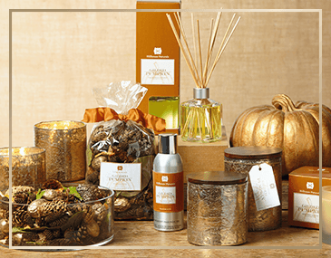 Gilded Pumpkin Collection by Hillhouse Naturals | James Anthony Collection