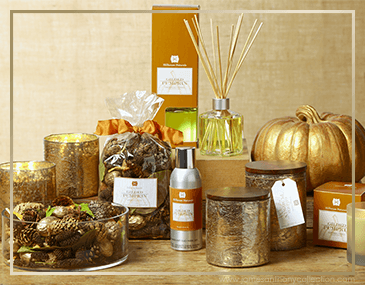 Hillhouse Naturals Gilded Pumpkin | James Anthony Collection