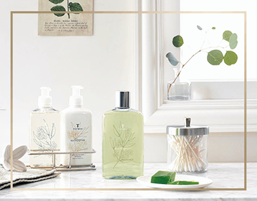 Thymes Eucalyptus Collection | James Anthony Collection