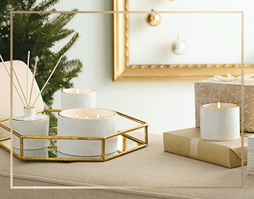Thymes Frasier Fir Gilded Collection | James Anthony Collection