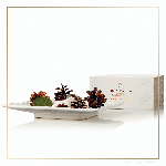 Thymes Frasier Fir Gilded Collection Porcelain Potpourri | James Anthony Collection