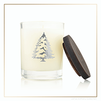 Thymes Frasier Fir Statement Collection Tree Candle | James Anthony Collection