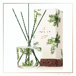Thymes Frasier Fir Pine Needle Reed Diffuser | James Anthony Collection