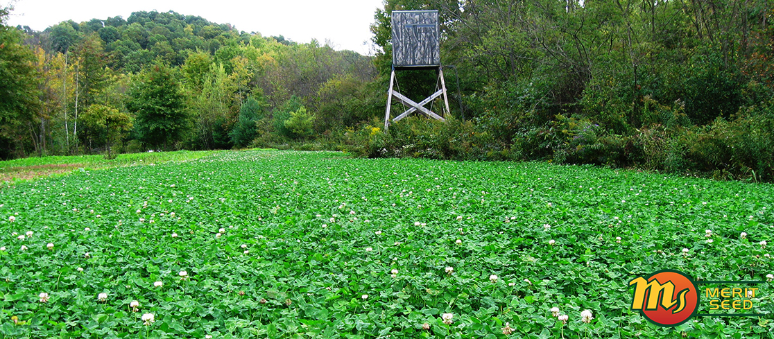 Wildlife Food Plot Store