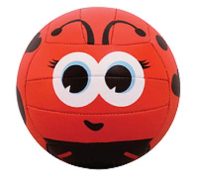 V200V- Mini Volleyball- Lady Bug