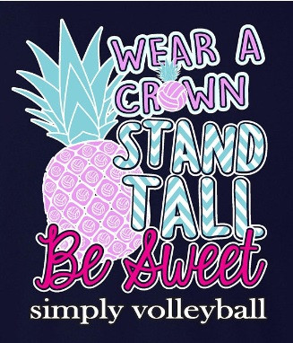 Pineapple Volleyball SS- Navy