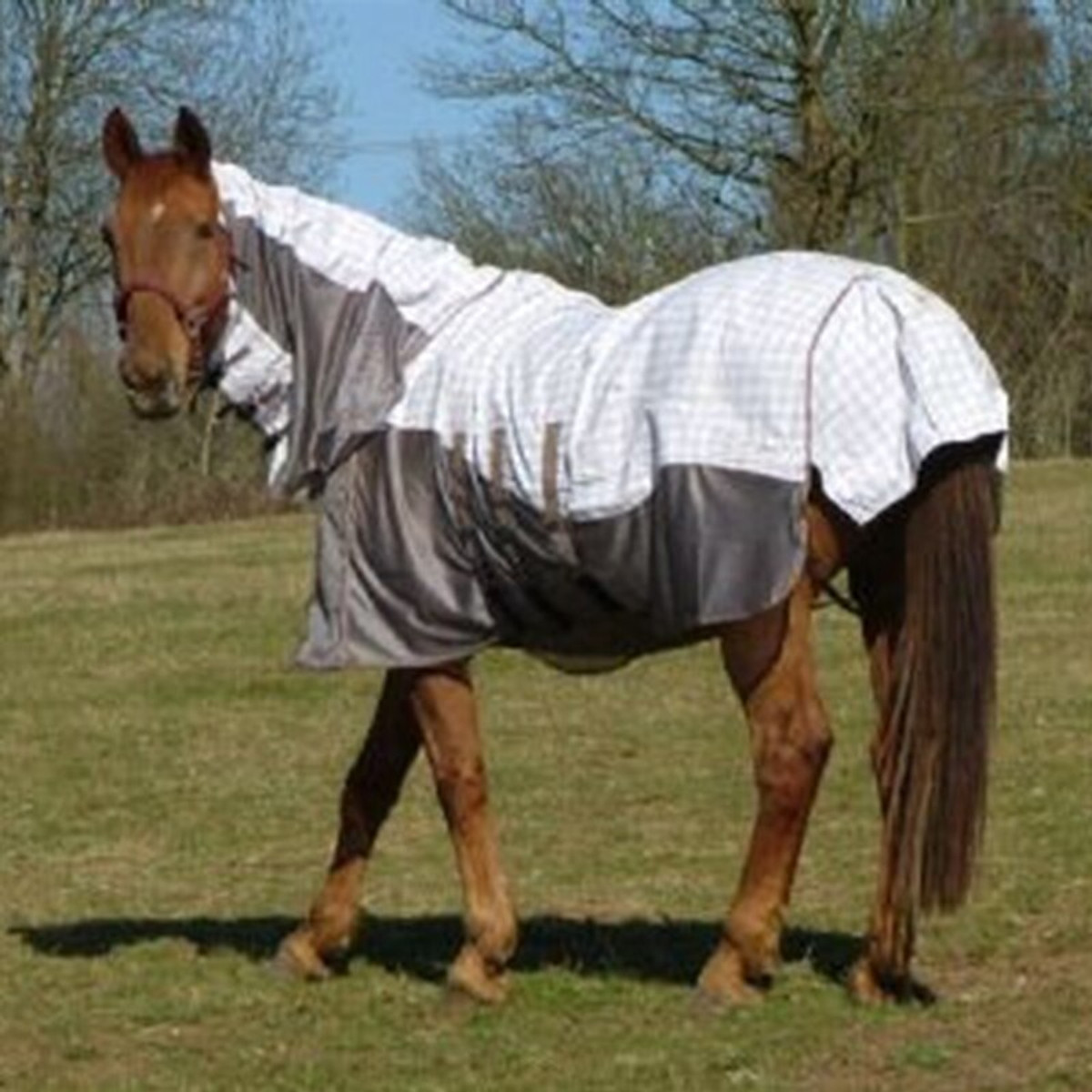 Mark Todd Air Mesh Combo Fly Rug Hooves And Boonies