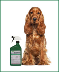 Dr Greengood Household Flea and Tick Killer- 32 Oz. Bottle (Ready to Use)