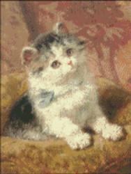 Kitten Little