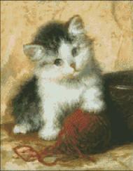 Kitten Mischief