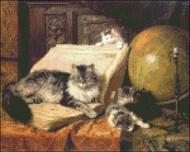 World Traveler Cats