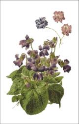 Violets Flower Cross Stitch Pattern