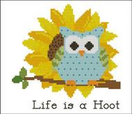 Flower Hootie Sunny Sunflower