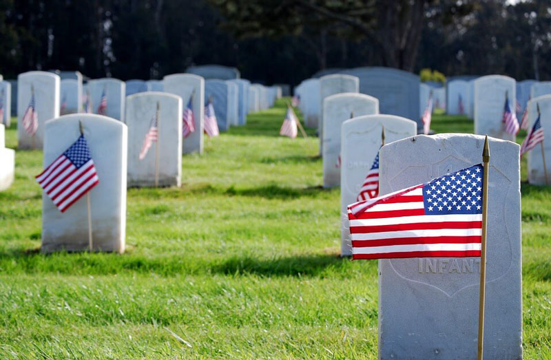 American flags in veterans cemetery