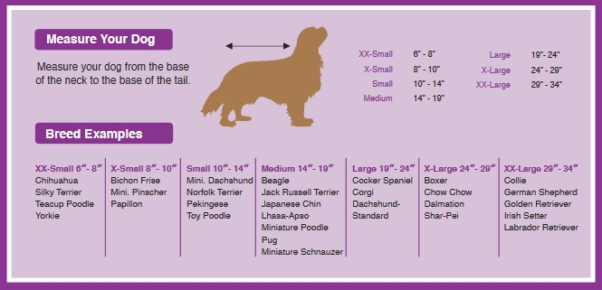 Find the Right Size for Your Pet