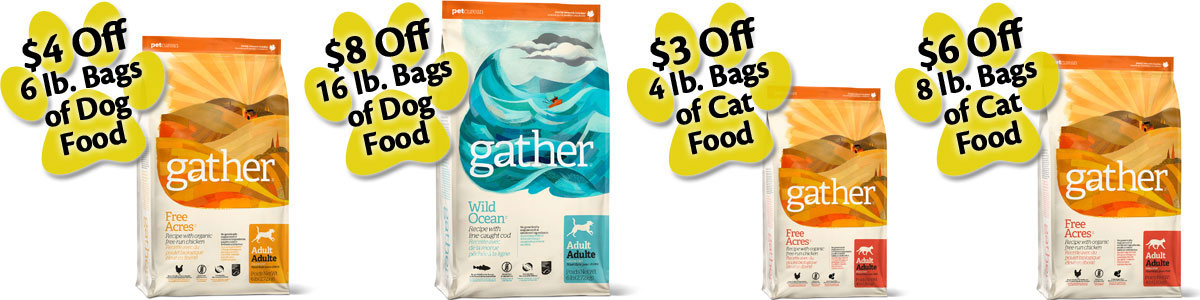 Gather Pet Food Promotion