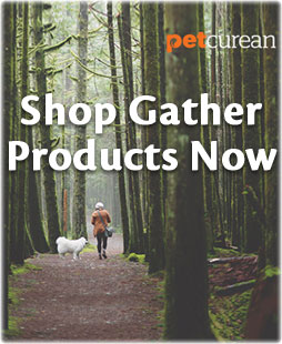 Shop Gather Products Now
