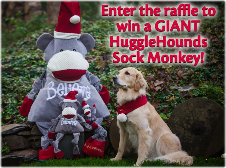 HuggleHounds Sock Monkey Raffle