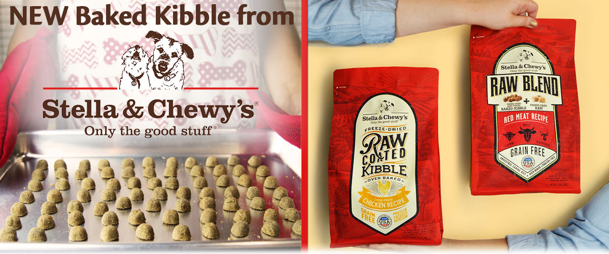 New Baked Kibble from Stella & Chewy's