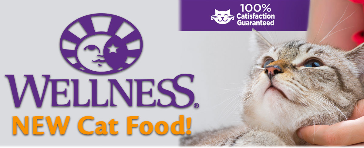New Wellness Cat Food